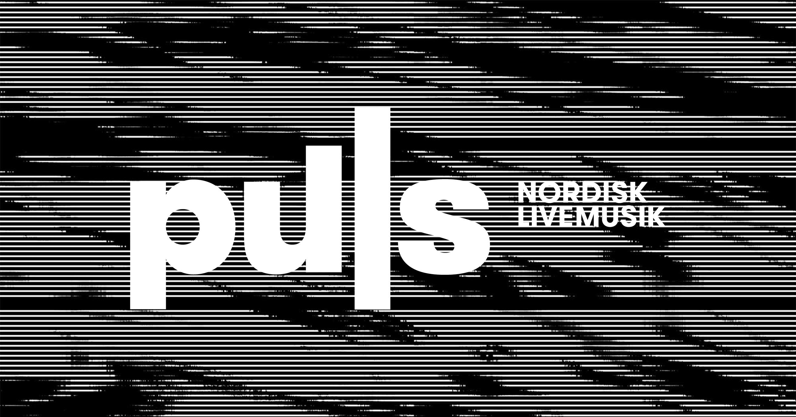 puls_banner_deskriptor